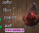 Murgi-Farm-Business in Hindi