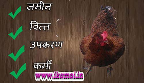 Poultry Farming Business kaise start kare