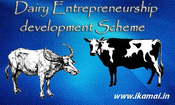 DEDS-NABARD-Subsidies-Scheme-for-Dairy-Farming