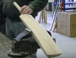 Cricket manufacturing business