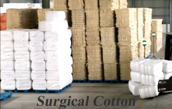 Surgical Cotton making-business