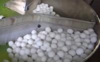 Naphthalene-Balls-making-business