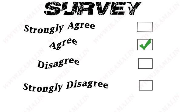 Survey business plan in hindi