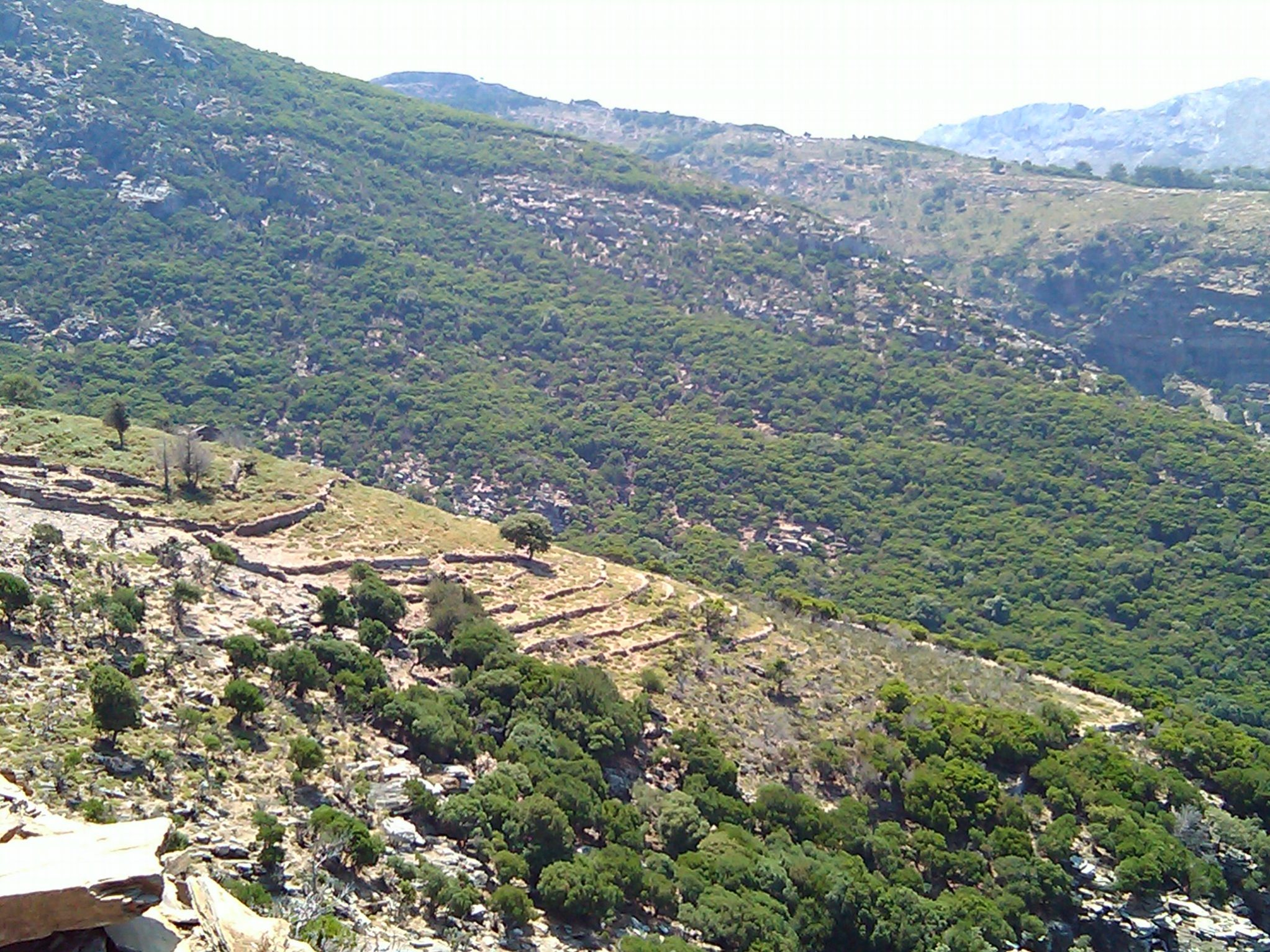 Hiking Ikaria: Doutsoula – Arehtousa   Περπατώντας στην Ικαρία: Δρούτσουλα – Αρέθουσα