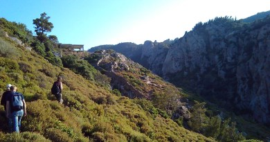Ikaria Pathways 2016