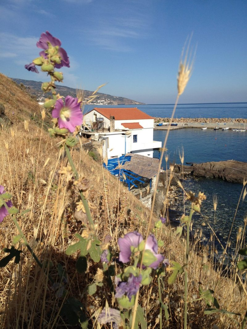 View to Karavostamo