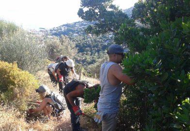 Volunteering Ikaria