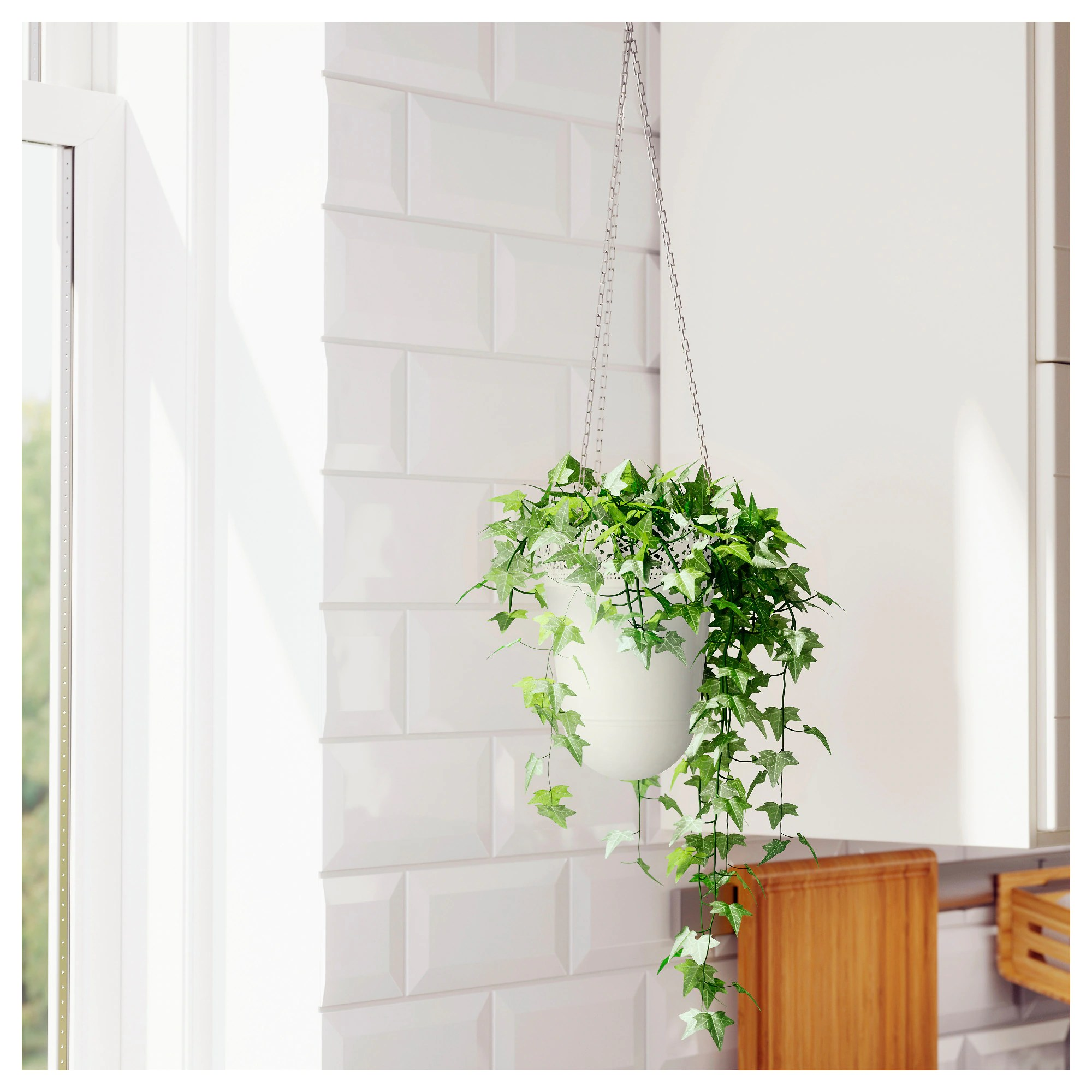 creative ways to hang a plant outdoors
