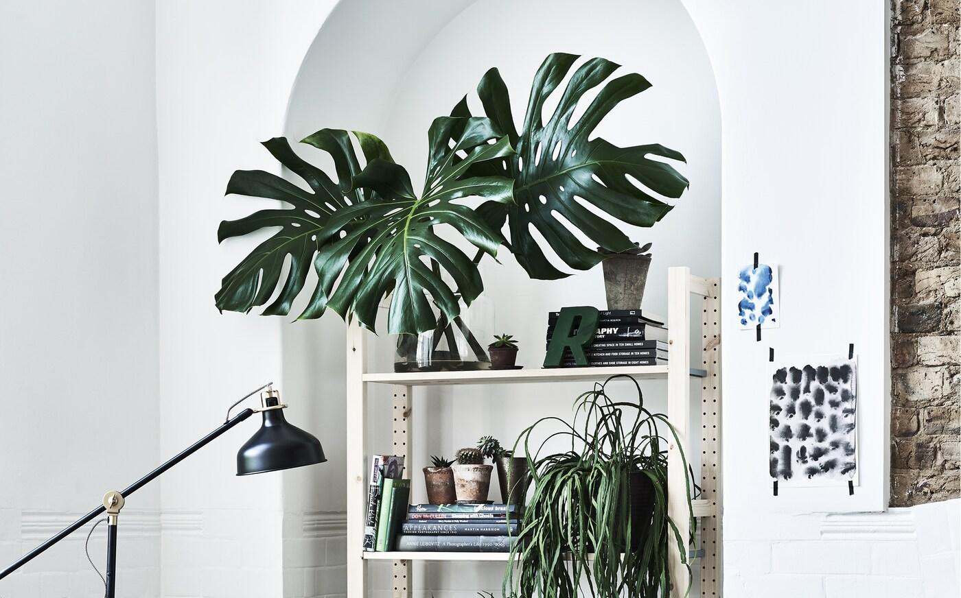 Idee Per Un Giardino Interno Indoor Garden Idee Ikea