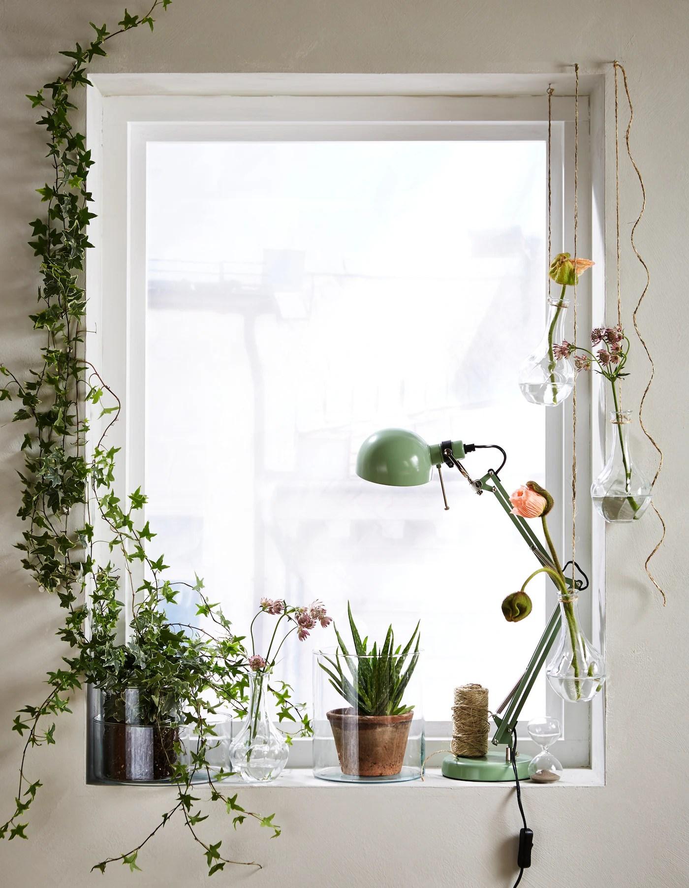 Nella nostra vasta selezione trovi una varietà di articoli per contenere le tue piante e. 5 Idee Per Decorare Con Le Piante Estive Ikea Svizzera