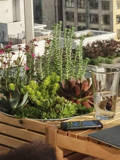 Outdoor Plant Shelf