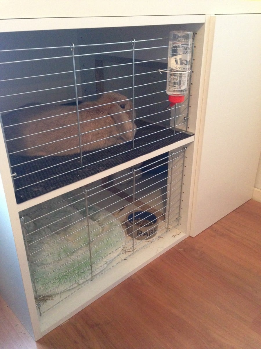 bunny cage with faktum cabinets ikea hackers. Black Bedroom Furniture Sets. Home Design Ideas