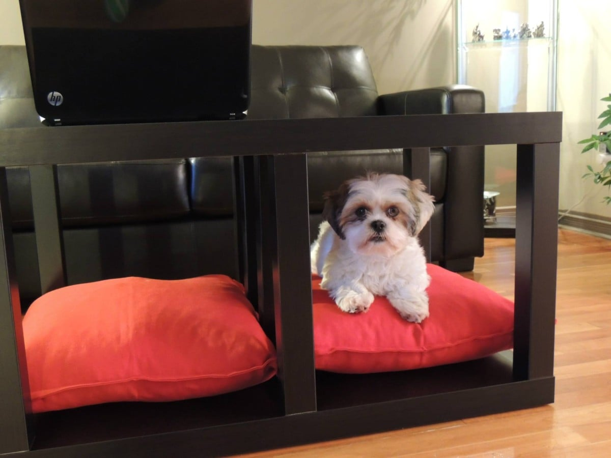 Hacks for dogs -coffee table dog bed
