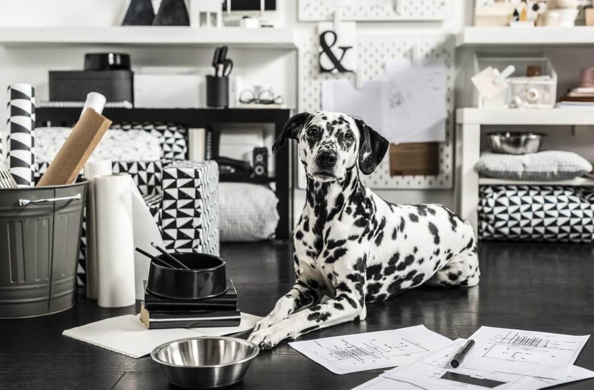 LURVIG IKEA Pet Collection