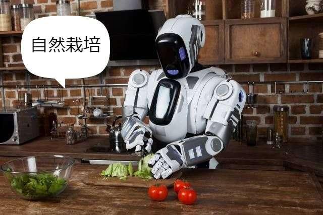 AIの答えは自然栽培