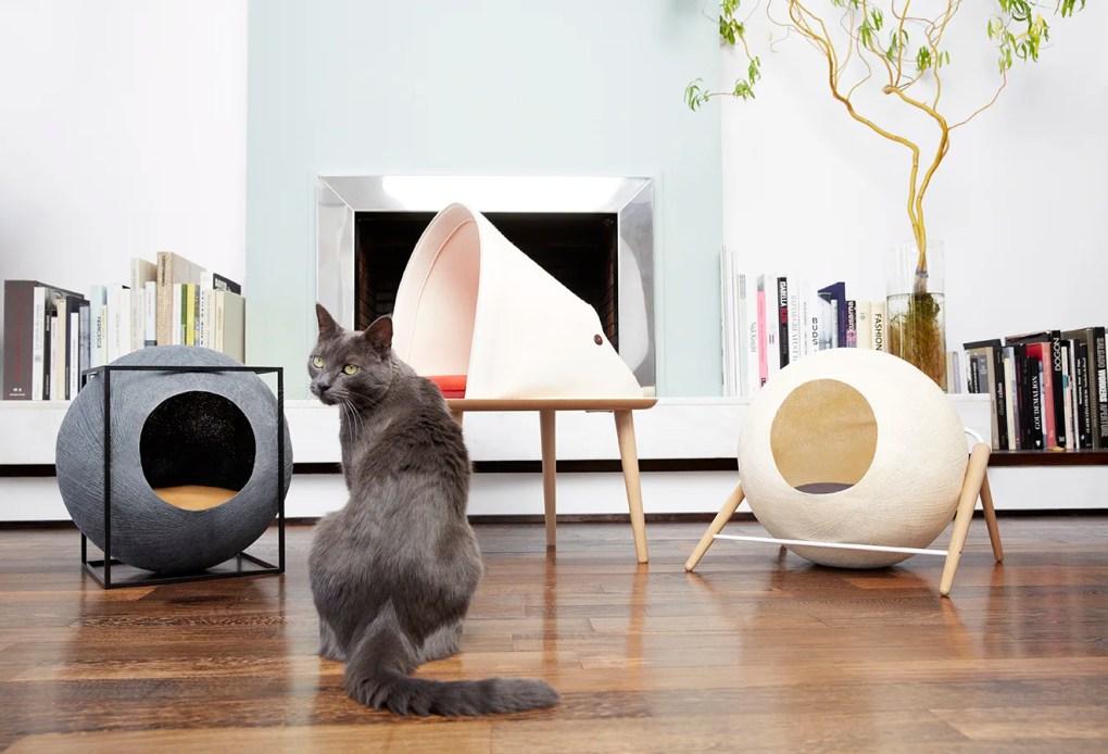 Kat met design kattenartikelen