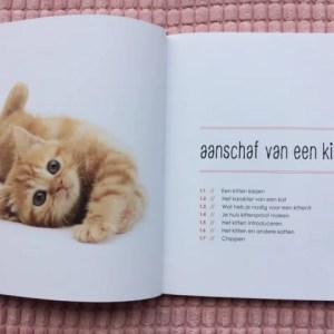 Pagina aanschaf van een kitten uit opvoedgids voor kittens