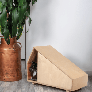 kattenhuis-cats-and-wood-flow-2
