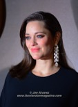 Marion Cotillard Allied Film Premiere © Joe Alvarez 36617