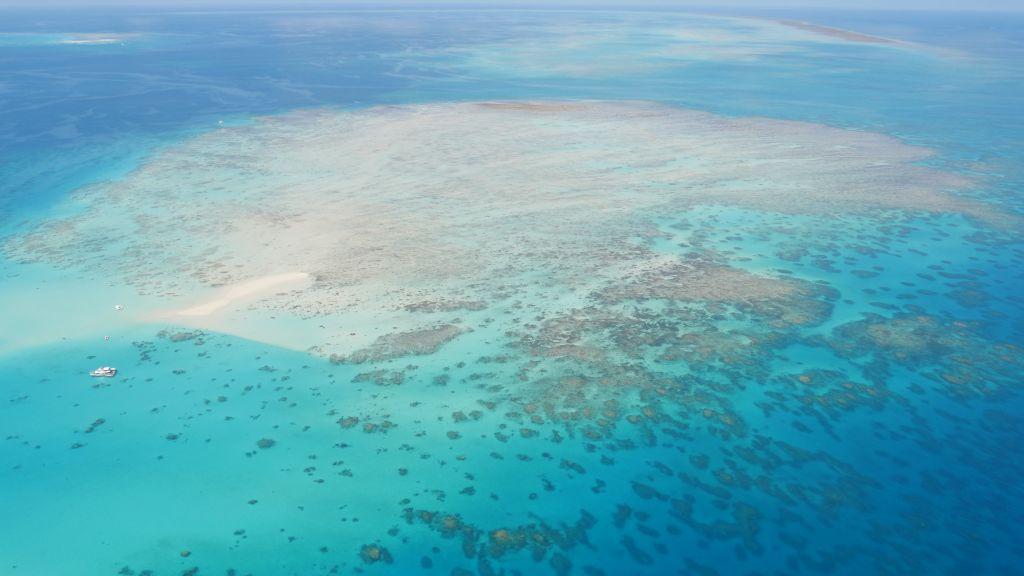 Uitzicht over het Great Barrier Reef tijdens een scenic flight over Cairns Australië