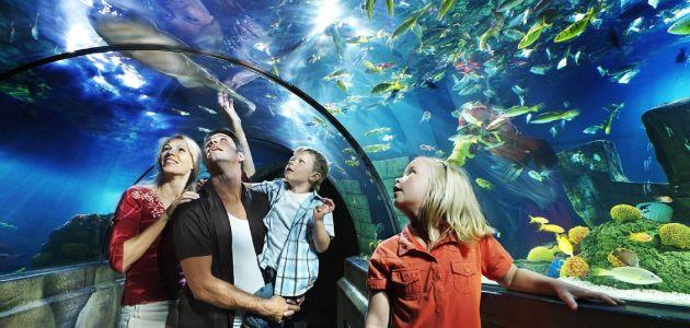 Dagaanbieding – Ontdek Legoland en SEA LIFE met het hele gezin incl. overnachting bij Düsseldorf