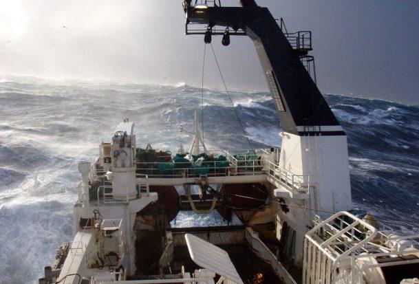 Storm, Havfisk