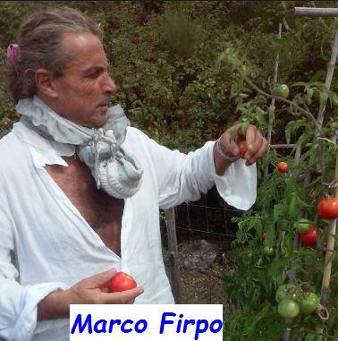 Marco Firpo