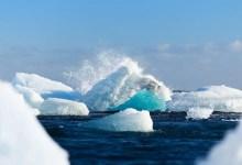iceberg si stacca dai ghiacciai
