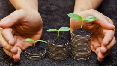 iniziative e progetti mondo più green