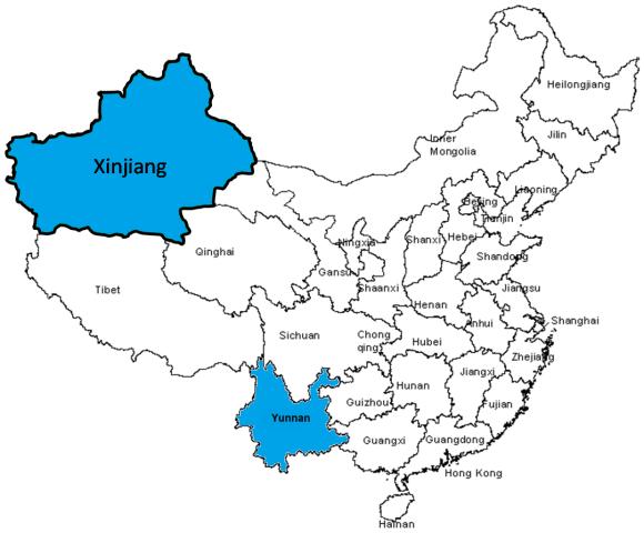 Le regioni critiche di Xinjiang e Yunnan evidenziate sulla mappa della Cina.