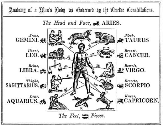 uomo zodiaco: segni zodiacali e parti del corpo