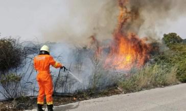 Paura a Roma, con il caldo tornano i roghi: grosso incendio nel quadrante sud (FOTO)