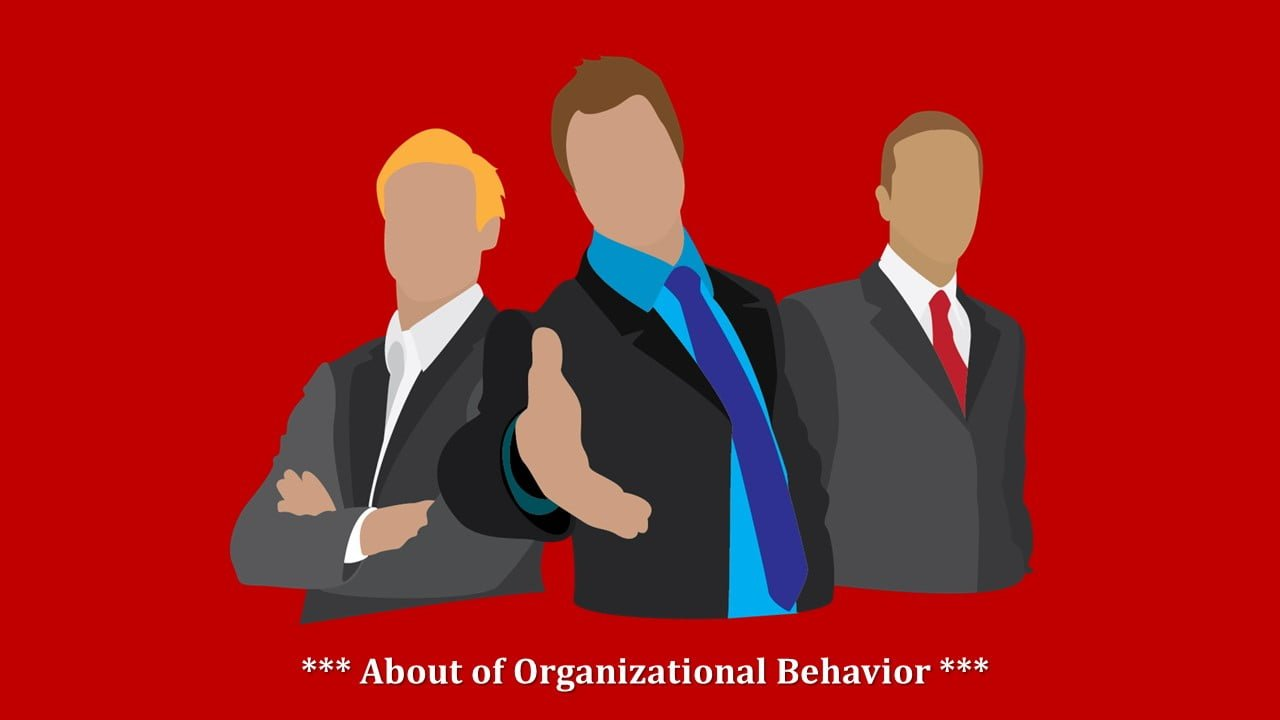 What do you know about Organizational Behavior