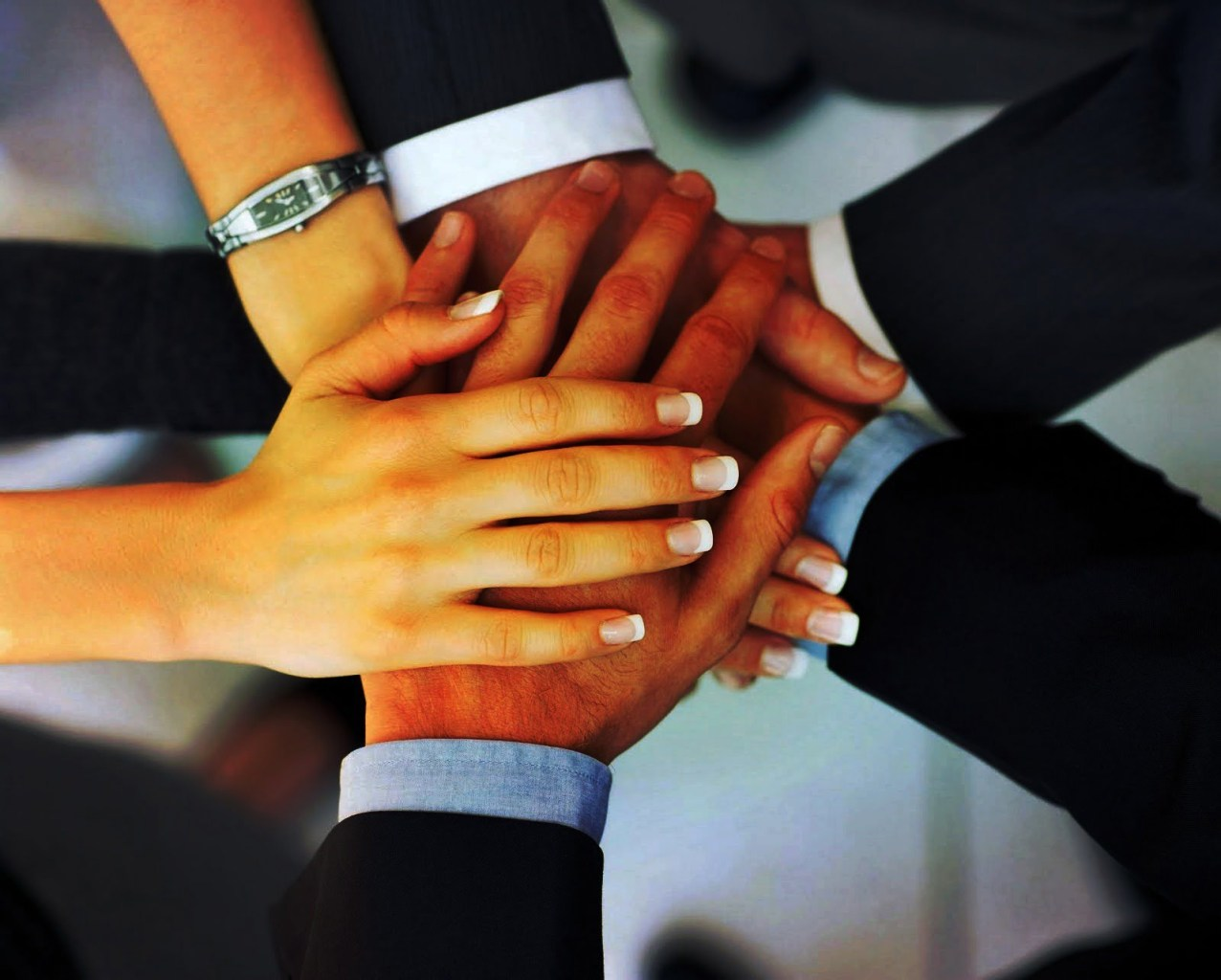 What is Building and Principles of Organizational Commitment - ilearnlot