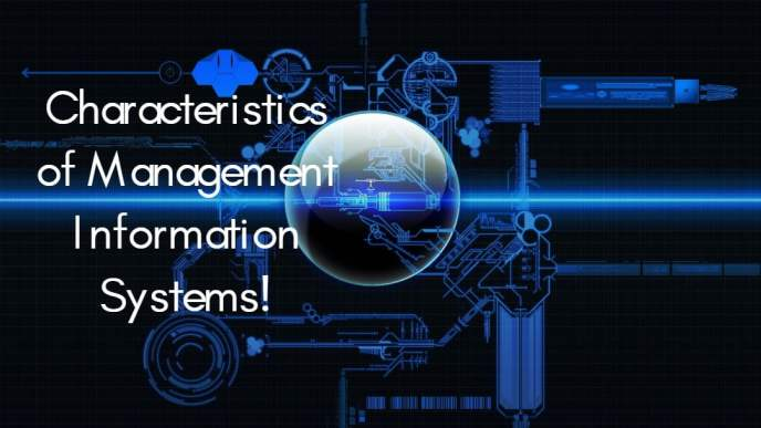 The Characteristics of Management Information Systems (MIS) - ilearnlot