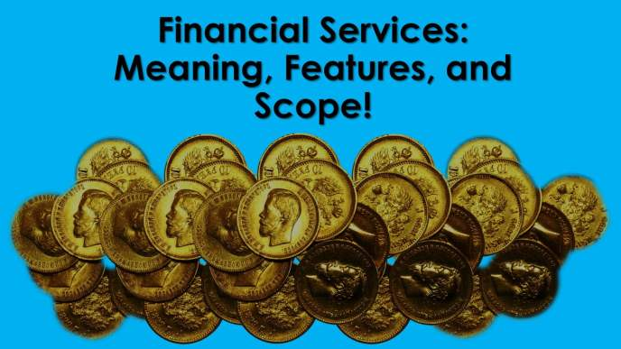 Financial Services Meaning Features And Scope Ilearnlot