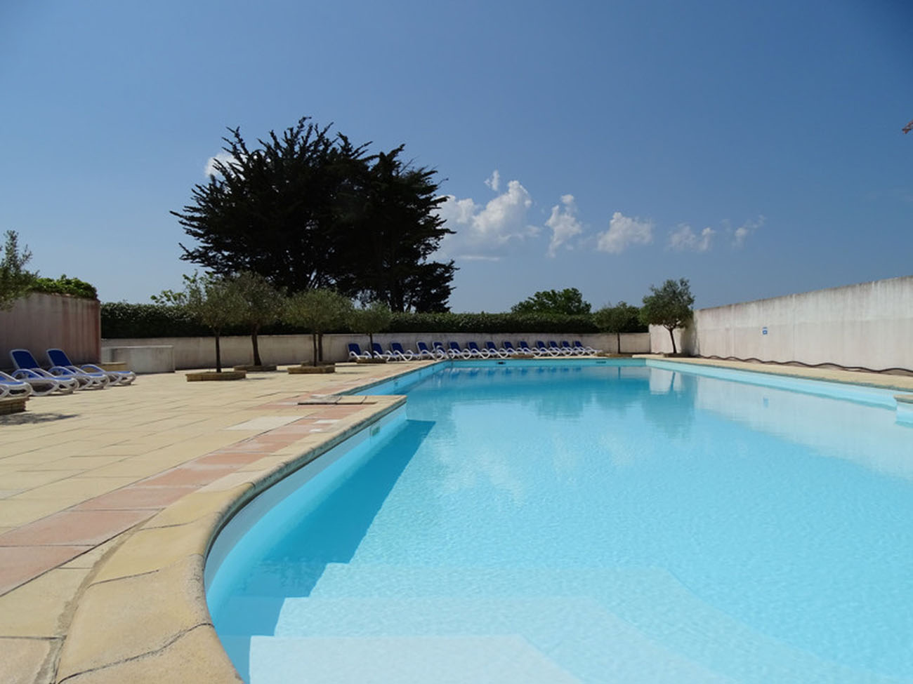 Location Appartement Ile de Ré - Carline - Piscine