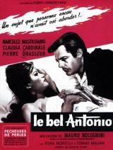 Le Bel Antonio (Il Bel Antonio, 1960)
