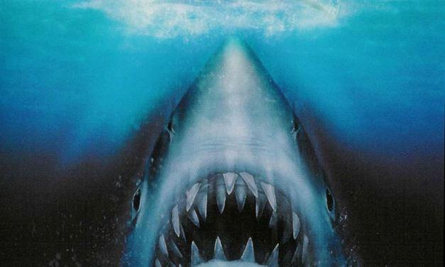Les dents de la mer…
