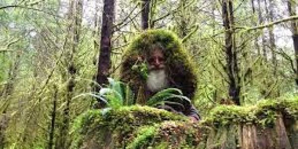 MICK – L'uomo che vive in un ceppo d'albero +Foto e Video