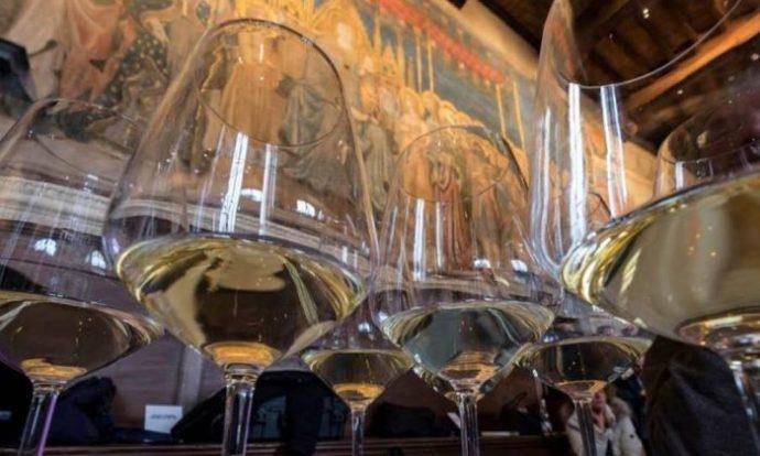 vernaccia anteprime vino toscana