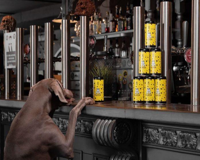 birra per cani Pawse