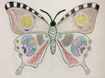 Ilfracombe Museum Butterfly Design Competition (38)