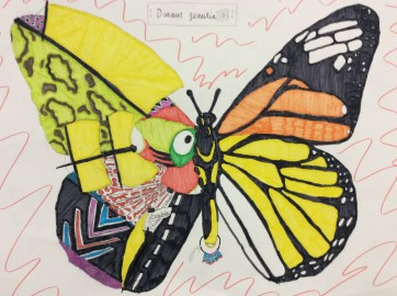 Ilfracombe Museum Butterfly Design Competition (79)
