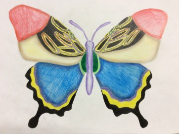 Ilfracombe Museum Butterfly Design Competition (82)