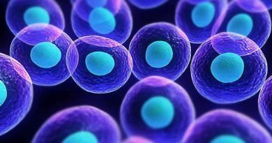 Molecola killer delle cellule tumorali