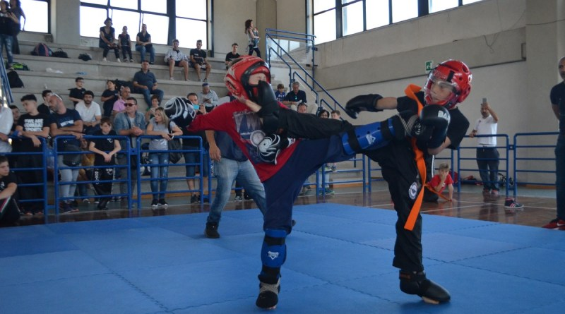 Summer Cup Msp Kickboxing