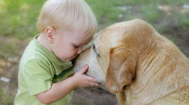 cani e gatti riducono lo stress nei bambini