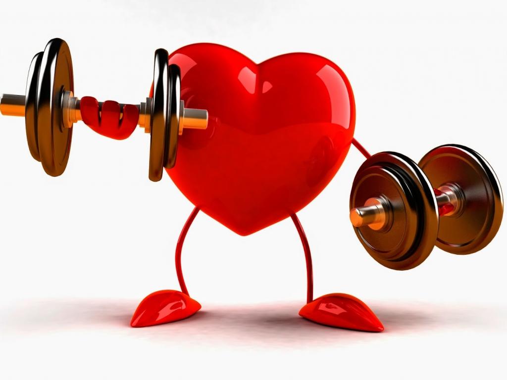 Risultati immagini per cuore sano