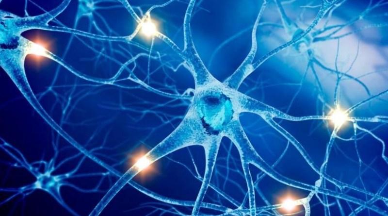 infusione staminali nervose in malato sclerosi multipla